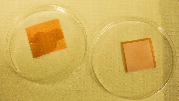 "An uncoated tile of screen is wetted by liquids, but a treated piece remains dry. University of Michigan researchers have developed a ""superomniphobic"" surface that can repel virtually any liquid. (Photo: Joseph Xu, Michigan Engg Communications & Marketing)"