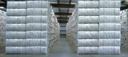 Raw Coton Bales from Madhav Cotton Industries, manufacture and exporter, located at Veraval (Shapar) dist. Rajkot, Gujarat. India. They have fully automatic ginning and pressing unit. E-mail : info@madhavcotton.com