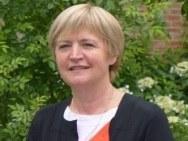 prof. dr. ir. Martine Wevers
