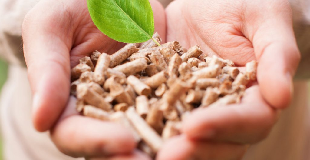 FibriTech is a new process for the production of porous and light material from cellulose and lignocellulose