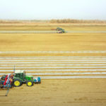 Xinjiang: Spring Sowing Of Cotton Has Been Carried Out