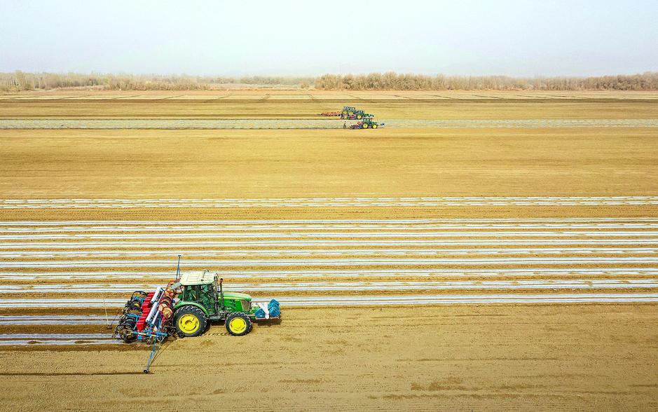 Xinjiang cotton sowing
