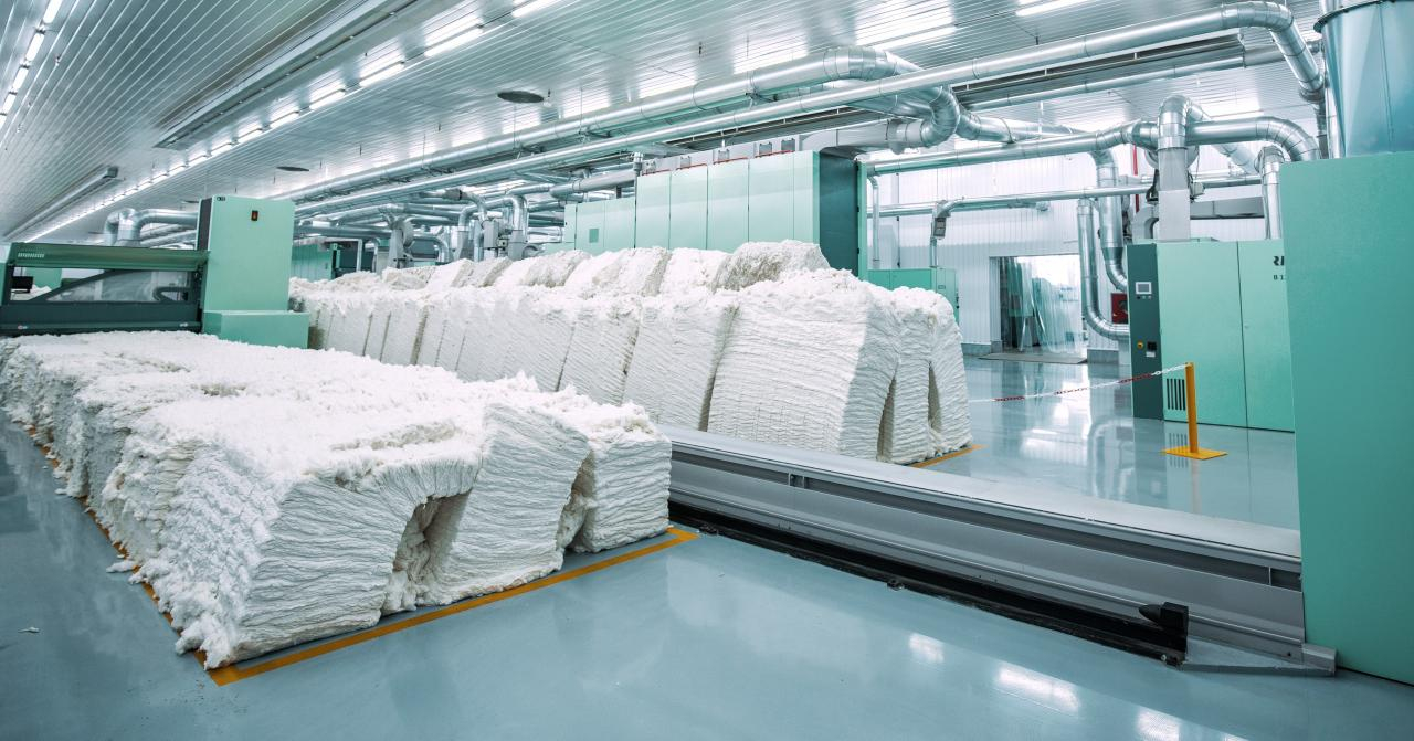 Khantex Group harvests cotton in their own agricultural fcields