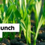 Nufarm announces launch of Leopard™ Herbicide