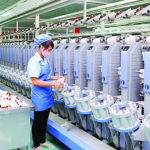 Vietnam National Textile and Garment Group: Production and business results of H1 2021